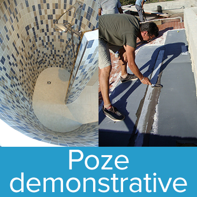 Poze demonstrative